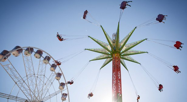 The Ekka returns with strawberry sundaes, dagwood dogs and all of the agriculture