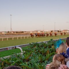 Road to Magic Millions Raceday