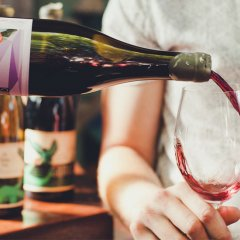 Vino but not as you know – Wine Playground returns to showcase our country's most progressive drops