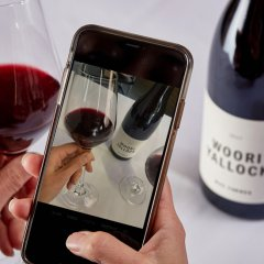 Fancy a specific drop? TextWine is your own personal sommelier